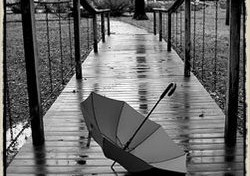 Unbrella_2