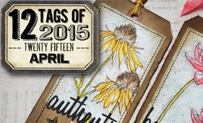12 Tags of 2015 - April | www.timholtz.com