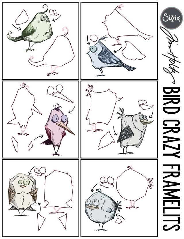 birdcrazy
